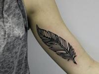 Татуировка перышко на плече