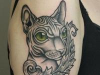 Татуировка кот на плече