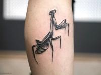 Татуировка насекомого на голени
