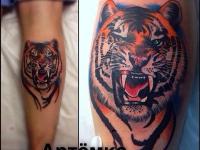Татуировка тигр на икре