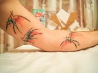 Татуировка птицы на руке