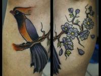 Татуировка птица на ветке на икре