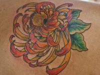 Татуировка хризантема на лопатке