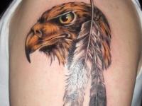 Татуировка голова ястреба на плече