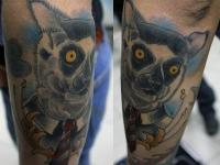Татуировка лемур на предплечье