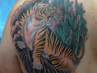Тату грозного тигра на лопатке