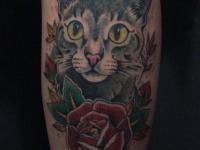 Тату кота с розой на предплечье
