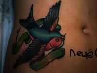 Татуировка птичка на животе