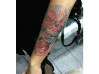 Цветная татуировка цветов на предплечье