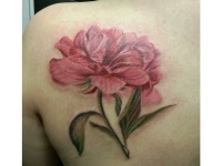 Красивый пион розовый на лопатке - татуировка