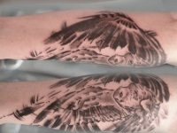 Татуировка летящий филин и надпись