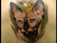 Татуировка голова кота на спине