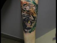 Татуировка голова тигра на предплечье