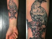 Татуировка ястреба с кинжалом в клюве