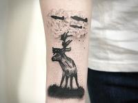 Татуировка самолеты над оленем