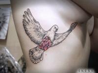 Тату голубь с цветами на теле на боку