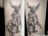 Татуировка заяц на задних лапах