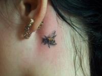 Татуировка пчелы за ухом