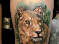 Татуировка львицы на охоте на руке