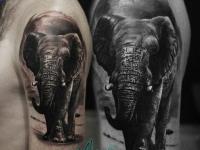 Татуировка на плече идущий слон