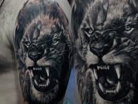 Голова льва на плече