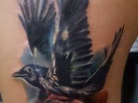 Татуировка птица и роза