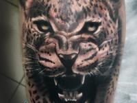 Татуировка голова гепарда