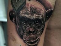 Татуировка голова обезьяны на плече