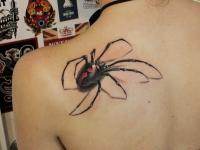 Тату большой паук вживую