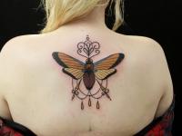 Татуировка мотылек на спине