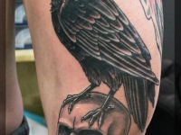 Татуировка ворон на черепе на бедре