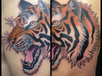 Татуировка большая голова тигра на руке