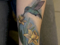 Татуировка колибри на нарциссе на предплечье