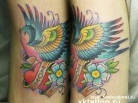 Татуировка птица с сердцем
