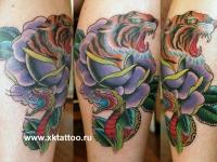 Татуировка тигр, роза и змея