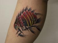 Татуировка жук на икре
