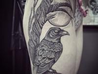 Татуировка птицы сидящей на дереве под луной
