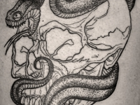 Татуировка череп и змея