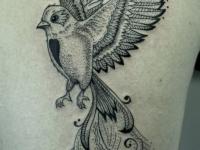 Тату летящая птица с длинным хвостом