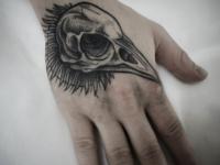 Татуировка череп птицы на кисти