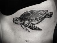 Татуировка черепаха на боку