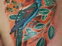 Татуировка птица с веткой на лопатке