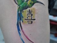 Татуировка колибри с иероглифом