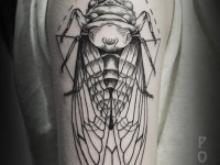 Татуировка муха на плече