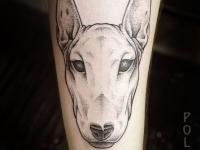 Татуировка морда на предплечье