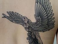 Татуировка голубь на лопатке
