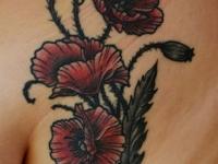 Татуировка маки на лопатке