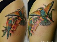 Две птицы сидят на цветке плече