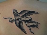 Татуировка ласточка на спине