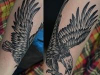 Татуировка орел на предплечье